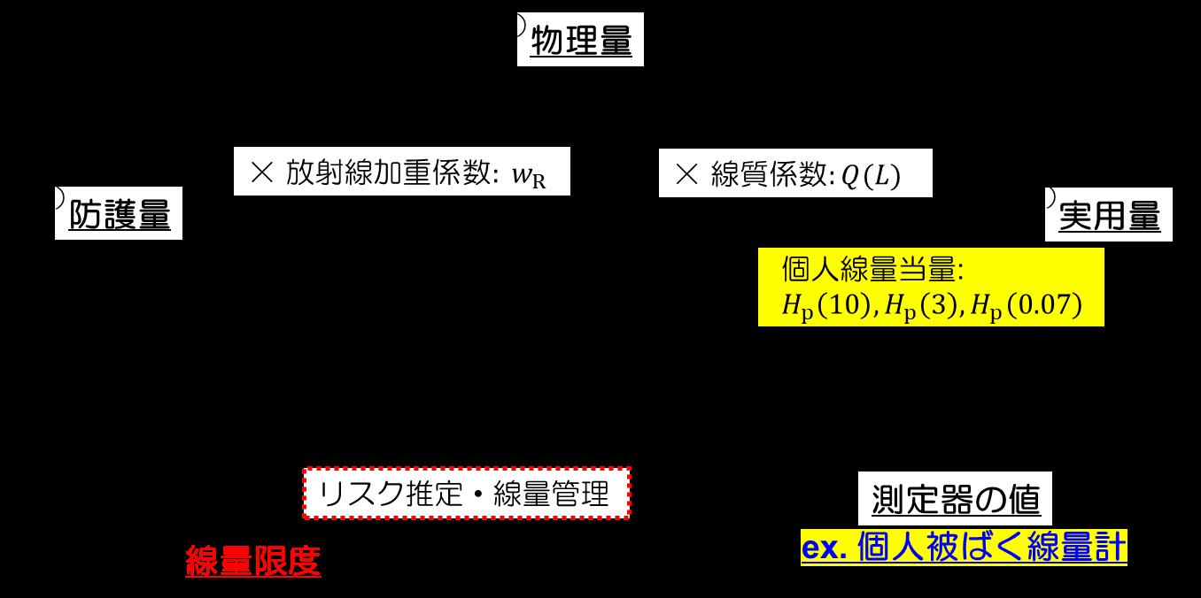 放射線の量と単位 | 放射線の基礎知識 | 長瀬ランダウア株式会社